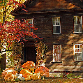 Autumn Days by Steve Shelasky - Buildings & Architecture Other Exteriors ( pumpkins house colors, autumn, fall,  )