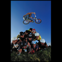BMX illustrated icon
