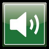 Audio Profile Switcher