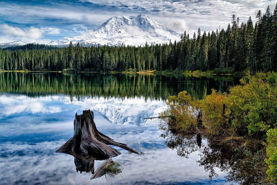 Mt. Adams by Gordon Banks - Landscapes Mountains & Hills ( plant, washington, red, north america, cascades, ce4, places, usa, mt. adams, flower, takhlakh lake )