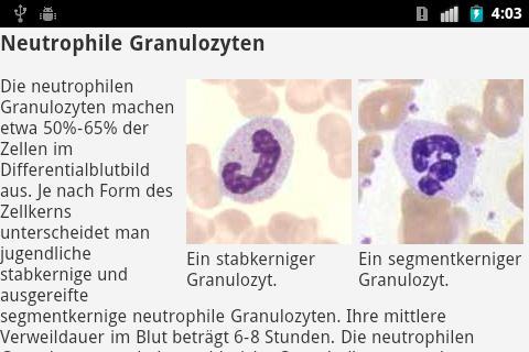 Der Pollack und seine Parasiten