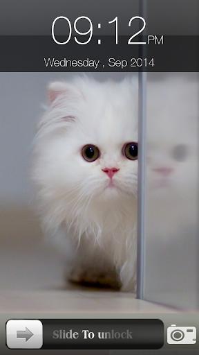 猫画面ロック
