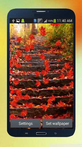 Autumn Leaves Live Wall - HD