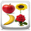Fruits & Flowers Encyclopedia icon