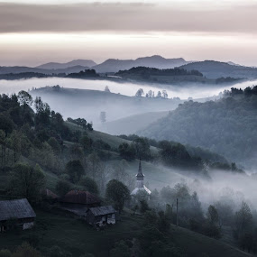 Morning at Valea Verde by Suciu Corina - Landscapes Mountains & Hills ( mountain, trees, sunrise, morning, mist,  )