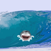 Surfs Up - Riptide Adventure