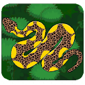 Magic Snake icon