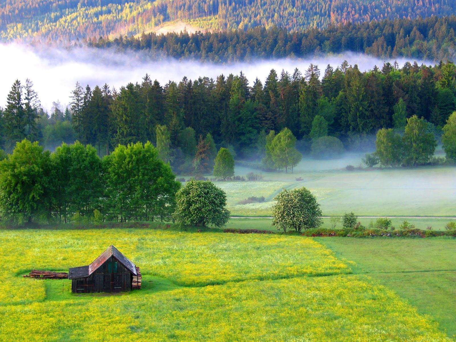 Dobel im Schwarzwald