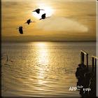 ZFeeling Good Golden Lake LW icon