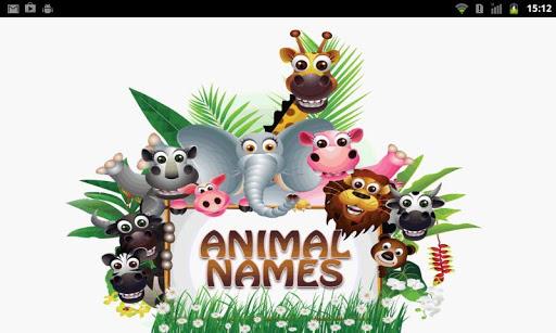 Animal Name FlashCard