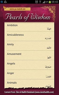 Pearls of Wisdom - screenshot