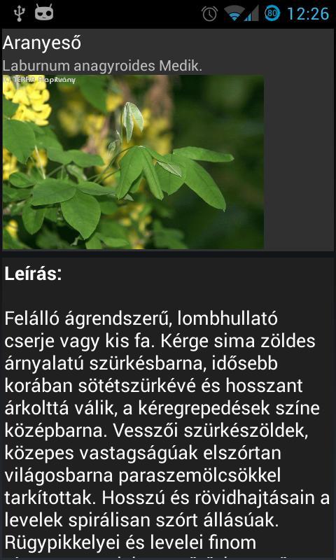 Terra Fa-lexikon és határozó- screenshot
