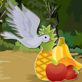 Fruit Picking Bird