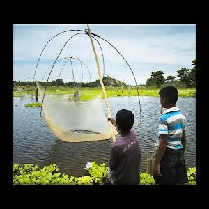 Рыбалка головоломки