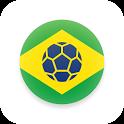 Чемпионат мира 2014 в Бразилии icon