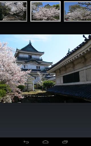 和歌山城 JP036