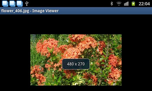 Image Viewer- screenshot thumbnail