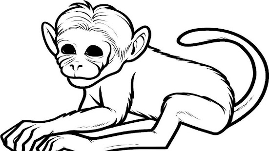 Line Drawing Monkey Face : Monkey face line drawing
