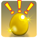 Poached Eggs Premium