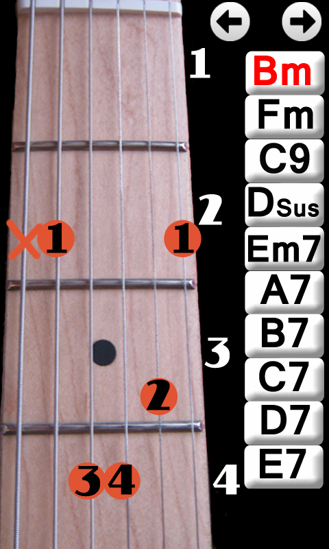 Learn Guitar Chords- screenshot