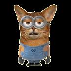 Minion Cat