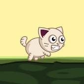 Bomb Kitty