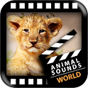 Best World Animals