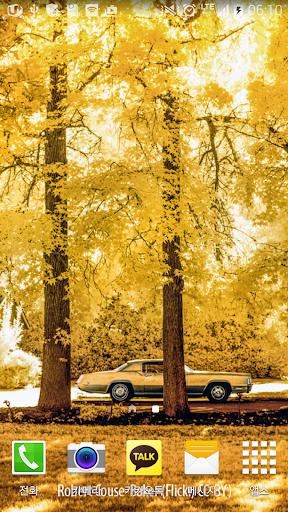 화사한노란숲배경