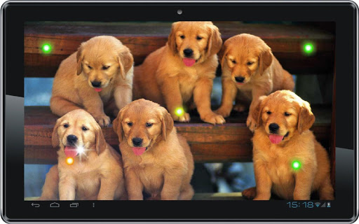 【免費個人化App】Puppies Voice live wallpaper-APP點子