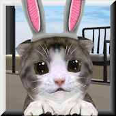 ChoCho Cat
