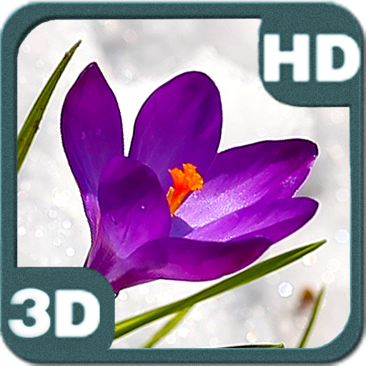 Crocus Flowers Among Icy Snow 個人化 LOGO-玩APPs