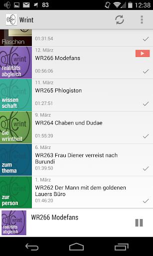 WRINT Gespräche - Holger Klein