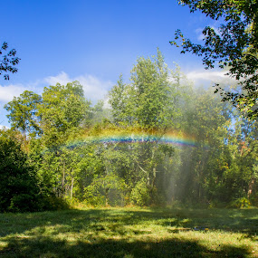 Sudden rainbow by Jim Anderson - Landscapes Weather ( water, trees, rainbow, rain, backdrop )