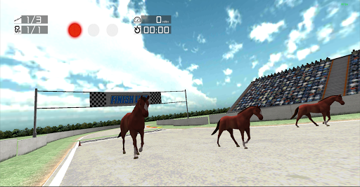 Animal Racing: Horse
