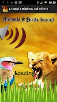 Screenshot of Animal + Bird Sound Effects