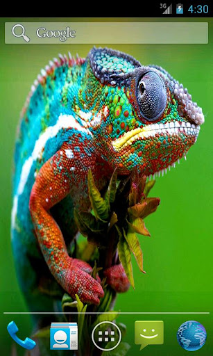 Pet Chameleon Effect LWP