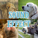 effets sonores des animaux