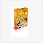 Paid Surveys in Spare Time