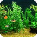 Fish Tank HD Live Wallpaper icon