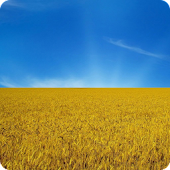 Ukraine Live Wallpaper HD