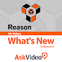 What's New in Reason 8 APK icon
