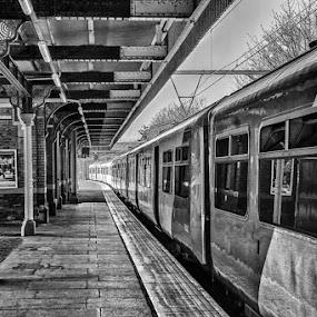 A Train in Ilford by Miguel Letra - Transportation Trains ( uk, train station, station, train, ilford )