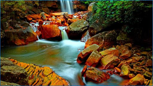 玩娛樂App|美麗的瀑布壁紙免費|APP試玩