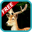 Deer Hunting Hunter 2014 icon