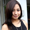 Nikita Willy icon
