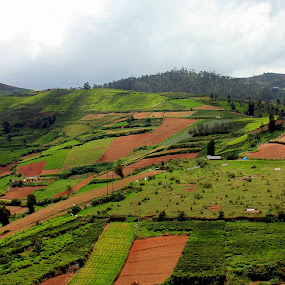 Landscape by Karthic Kumar - Landscapes Mountains & Hills ( hill, mountain, nature, green )