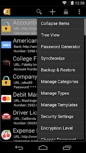DataVault Password Manager - screenshot thumbnail