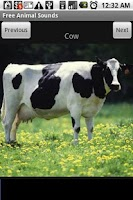 Screenshot of Free Animal Sounds