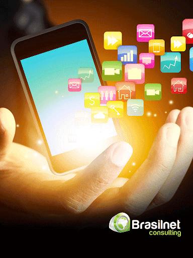 Brasilnet Consulting