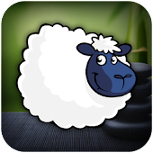 Sheepster Daily Meditation